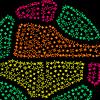 色彩密集恐懼症 2(Coloruid 2)