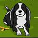 訓練寵物狗狗(Dog Training)