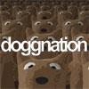 道格斯小熊搬磚建城堡(Doggnation)