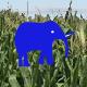 大象跑跑跑(Run Elephant Run)