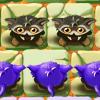大眼貓戰略(Troglodytes)