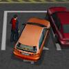 代客泊車 3D(Valet Parking 3D)